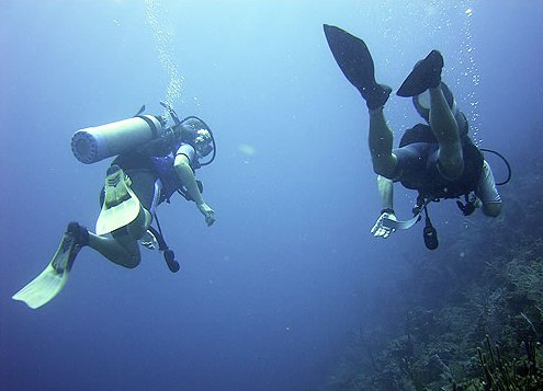 diving at Blue Marlin Lodge, Belize Barrier Reef