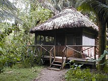 Ian Anderson's CAVES BRANCH Jungle Lodge, Belize, specialises in 