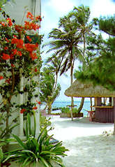 Mata Rocks Resort is a small intimate beachfront hotel in San Pedro on the island of Ambergris Caye, Belize, providing personalized service and tropical elegance in a casual relaxed atmosphere. All rooms have ocean views.