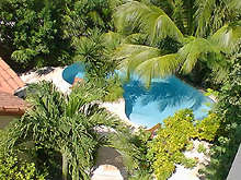belize,Belize travel, Belize tourism, Belize hotels, Ambergris Caye hotels,hotel,palms,ambergris caye,lodging,condominium,condominiums,hotel,the palms,the palms,the palms,the palms,san pedro hotel,palms,palms,palms,lodging,condominiums,condos, ambergriscaye,ambergris caye,caribbean,belize,hotel,palms,ambergris caye
