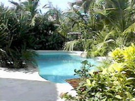 pool in the tropical gardens of of the palms oceanfront hotel, san pedro, ambergris caye, Belize