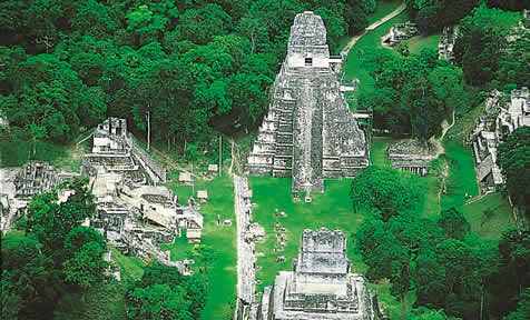 Tikal Tour To The Temples And Pyrmaids In The Tikal